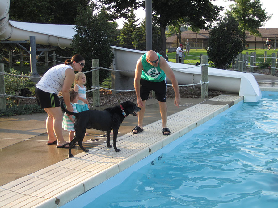 Swimming Gone To The Dogs City Of Sioux Falls